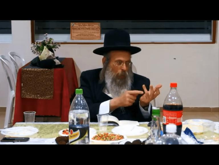 הרב גודלבסקי – בא תלמד מדוד המלך